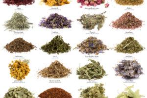 أهمية العلاج بالإعشاب