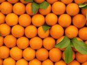 هل تعلم ما هي فوائد البرتقال