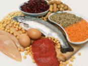 ما هو البروتين